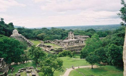 Zdjecie MEKSYK / brak / rezerwat selwy lokandońskiej / Palenque