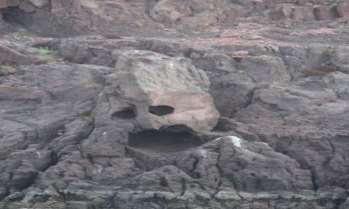 Zdjecie MEKSYK / Baja California / Isla Espiritu Santo / taka sobie skala