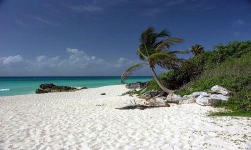 Zdjecie MEKSYK / Playa Del Carmen / dzika plaża / luzik...:)