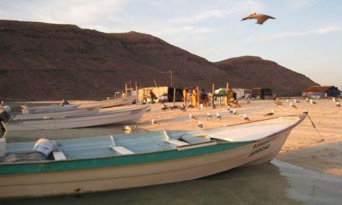 Zdjęcie MEKSYK / Baja California Sur / Espiritu Santo / Przystań rybacka rano