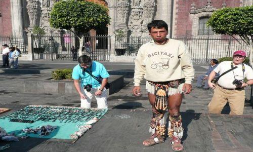 Zdjecie MEKSYK / Mexico City / Placa National / Pan szofer