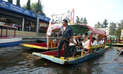 Zdjęcie MEKSYK / Meksyk / Kanały Xochimilco / W ogrodach Xochimilco