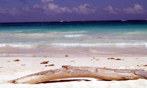 Zdjecie MEKSYK / brak / Jukatan / Vamos a la playa