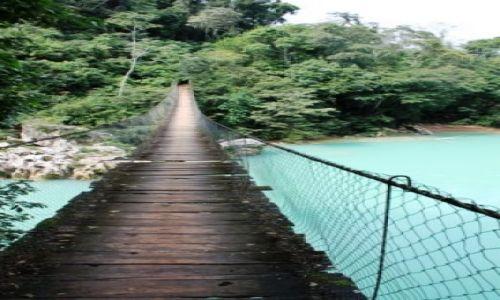 Zdjecie MEKSYK / - / Chiapas / bridge across forever