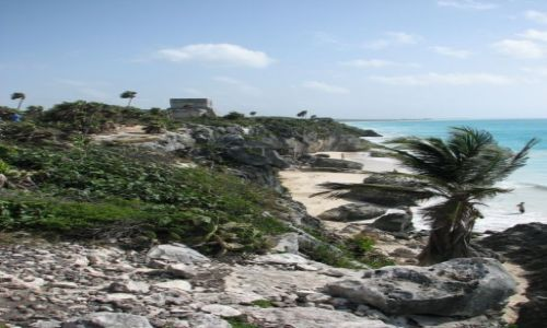 MEKSYK / - / Tulum / Nad morzem Karaibskim