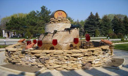 Zdjęcie MOłDAWIA / - / MOŁDAWIA / Mołdawia winem stoi