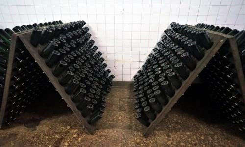 Zdjęcie MOłDAWIA / Kiszyniów / Cricova / Tak dojrzewa wino