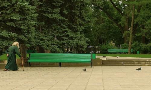 Zdjecie MOłDAWIA / - / Kiszyniów / W parku
