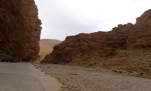 Zdjecie MAROKO / Góry Atlas / Góry Atlas / Kanion rzeki Dades