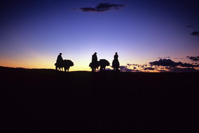 Zdjęcia: północna Mongolia, północna Mongolia, Mongolia, MONGOLIA
