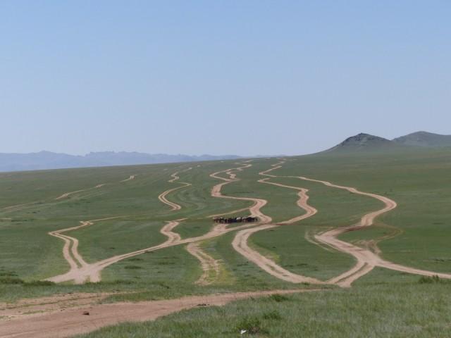 Zdjęcia: step, centralna, stepem szerokim, MONGOLIA