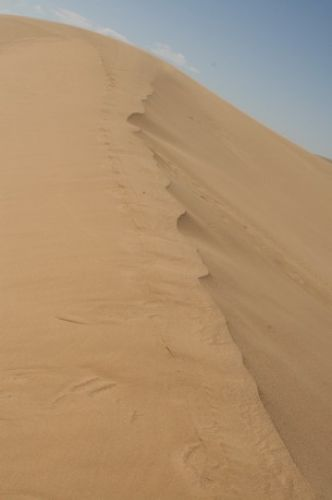 Zdj�cia: okolice Erdene, duny na Pustyni Gobi, MONGOLIA