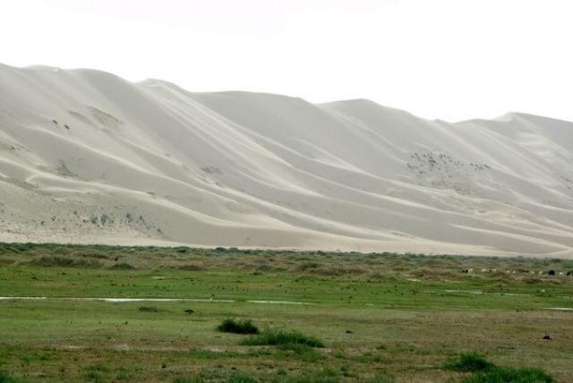 Zdjęcia: Chongoryn Els, Gobi, Wydma, MONGOLIA