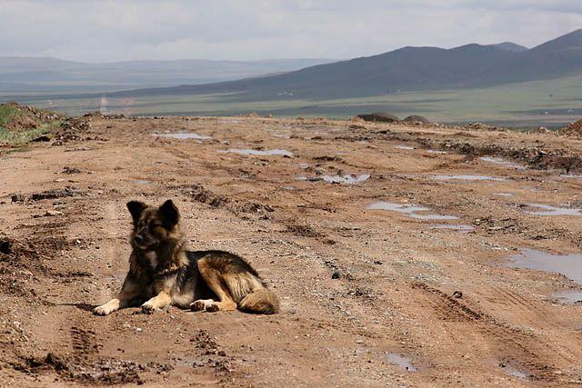 Zdjęcia: srodkowa Mongolia, mongolskie drogi, MONGOLIA