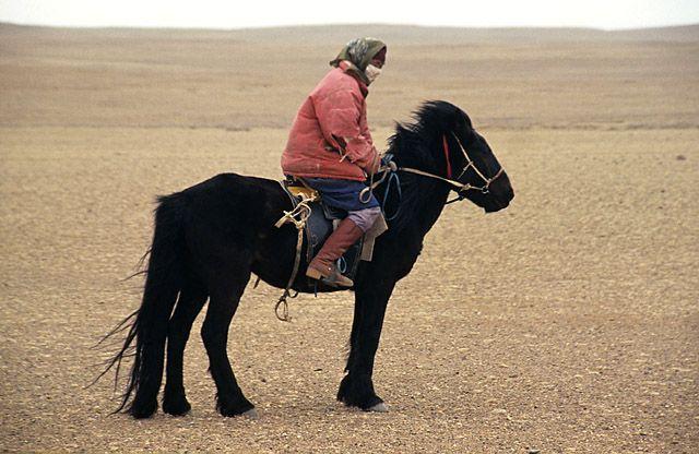 Zdjęcia: okolice Gobi, pod wiatr..., MONGOLIA