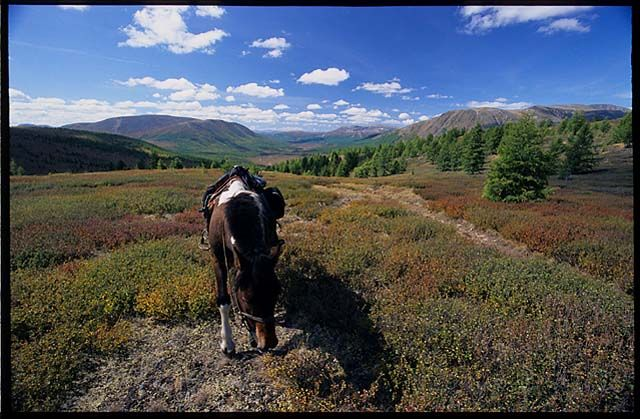 Zdjęcia: północna Mongolia, przestrzeń, MONGOLIA