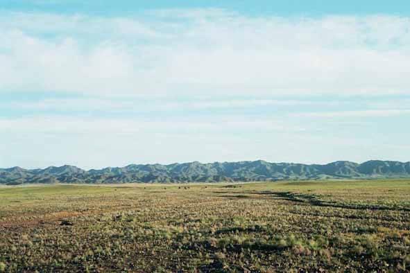 Zdjęcia: Ałtaj, Ałtaj gobijski, MONGOLIA