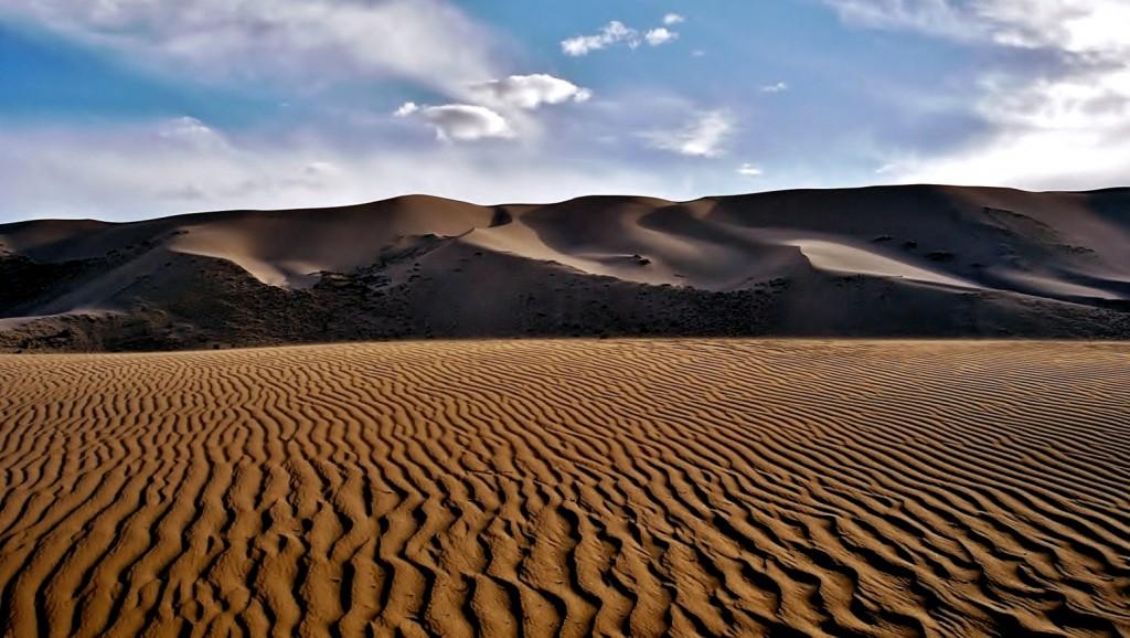 Zdjęcia: Khongoryn Els (Singing Sands), Pustynia Gobi, Wydmy Khongoryn Els .., MONGOLIA