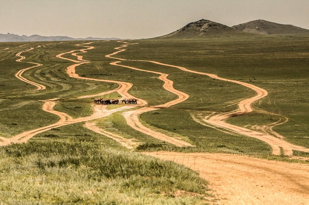 Zdjęcia: płn.Mongolia, płn. Mongolia, Całkiem jak w życiu...., MONGOLIA
