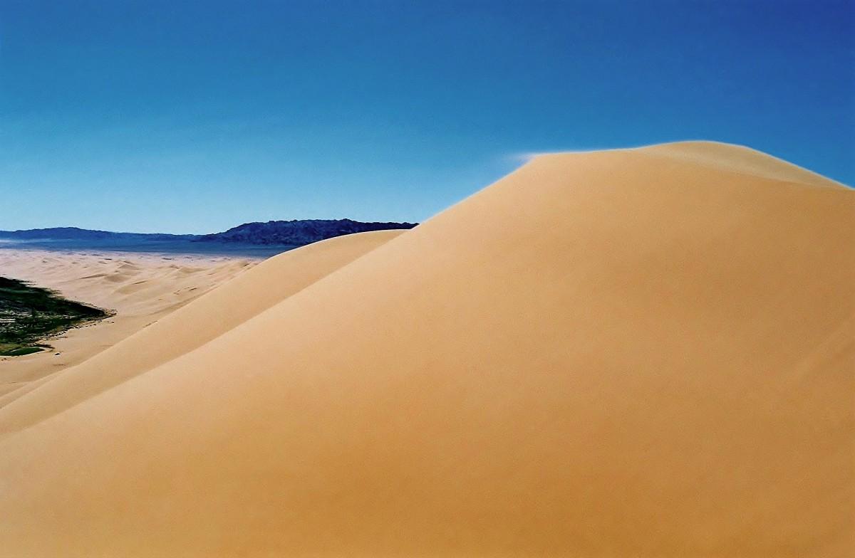 Zdjęcia:  Khongoryn Els (Singing Sands), Pustynia Gobi, Wydmy Khongoryn Els, MONGOLIA