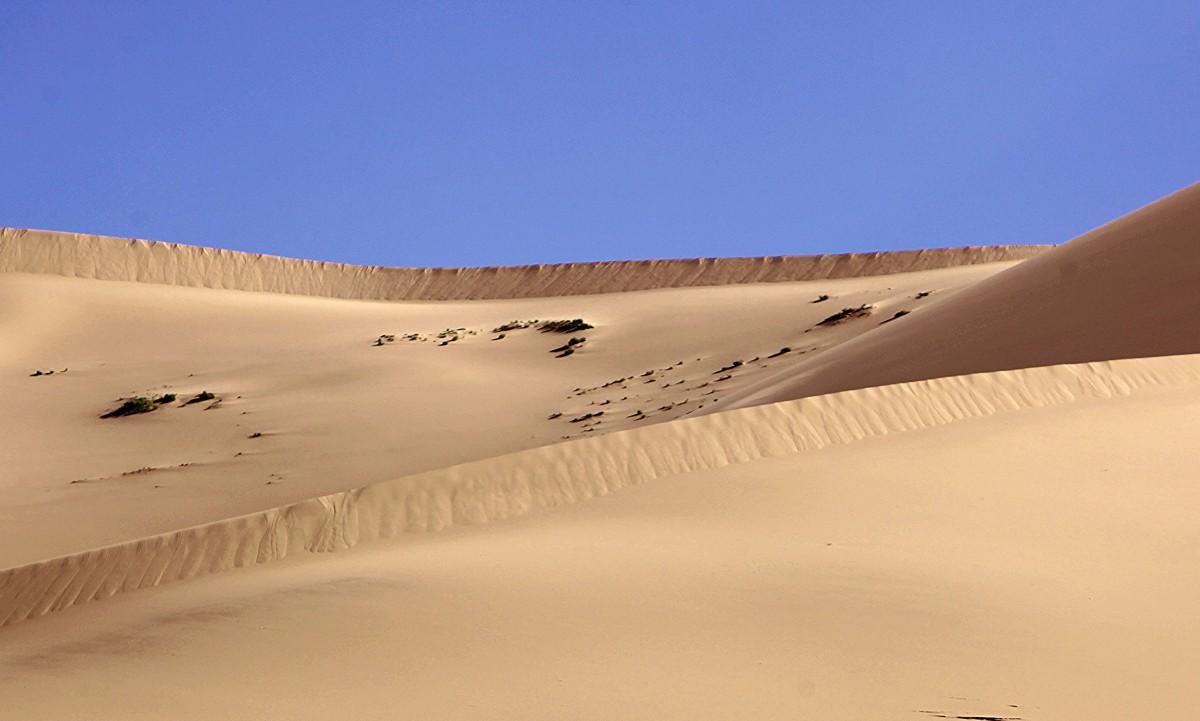 Zdjęcia: Pustynia Gobi, Dalanzadgad, Piasek, MONGOLIA
