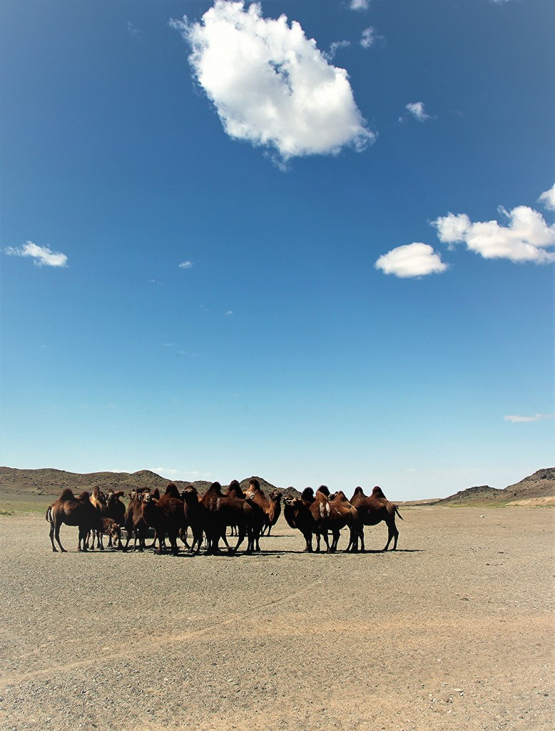 Zdjęcia: Tawtaj Morił, Dalanzadgad, Pod chmurką, MONGOLIA