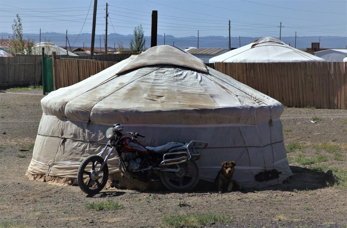 Zdjęcia: Pustynia Gobi, Dalanzadgad, Wierny stróż, MONGOLIA
