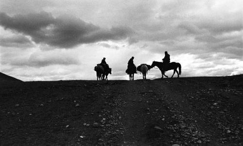 Zdjecie MONGOLIA / północna Mongolia / północna Mongolia / Mongolia