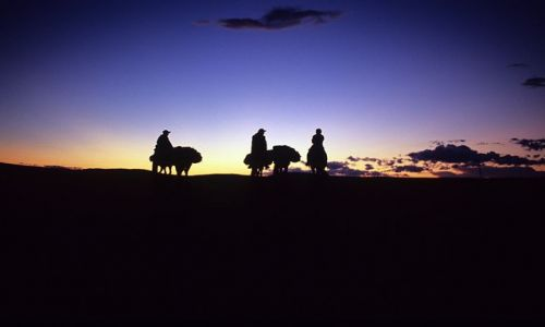 Zdjecie MONGOLIA / p�nocna Mongolia / p�nocna Mongolia / Mongolia