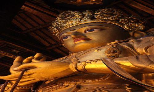 Zdjęcie MONGOLIA / Ułan Bator / Klasztor Gandan / Budda z Klasztoru Gandan