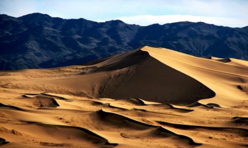 Zdjecie MONGOLIA / Zoolongiyn Nuruu / Wydmy Khongoryn Els (Singing Sands) / Pustynia Gobi