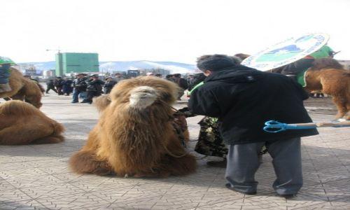 Zdjecie MONGOLIA / Ułan Bator / Plac Suche Batora / Święto Tysiąca Wielbłądów