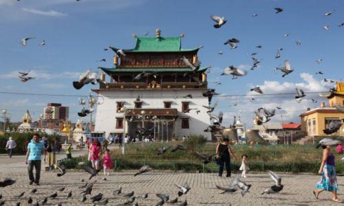MONGOLIA / Ułan Bator / Gandan / Gołębie