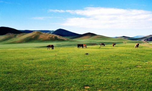 MONGOLIA / Środkowa Mongolia / Góry Changaj / Dolina Orkhon Gol