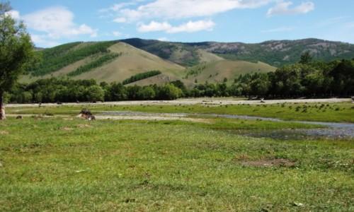 Zdjęcie MONGOLIA / N Mongolia /    / Góry Chentej