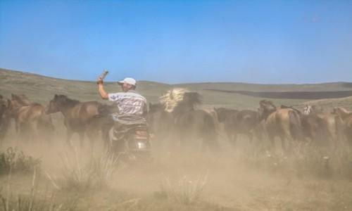 Zdjęcie MONGOLIA / płn. Mongolia / płn.Mongolia / Pasterz...