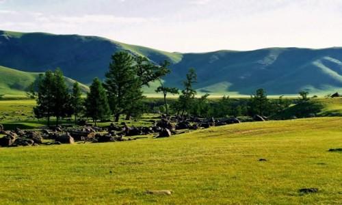 Zdjęcie MONGOLIA / Góry Changajn Nuruu (Ałtaj Gobijski) /  Dolina Orkhon Gol  /  Wodospad Orchony Ulaan Cutgalan chürchree