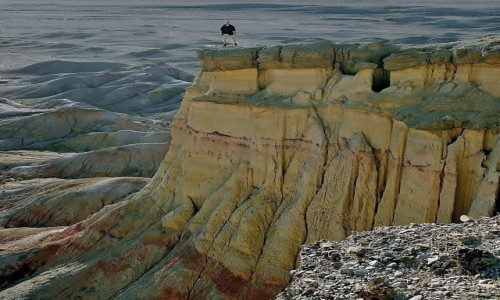Zdjecie MONGOLIA / Pustynia Gobi /  Klify Tsagaan Suvarga -  na południowy-wschód od  Olziyt / Skamieniałe mor