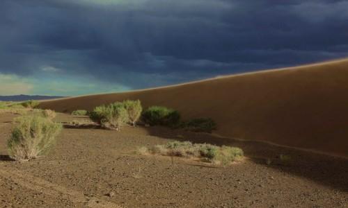 MONGOLIA / Dalanzadgad / Pustynia Gobi / Przed burzą