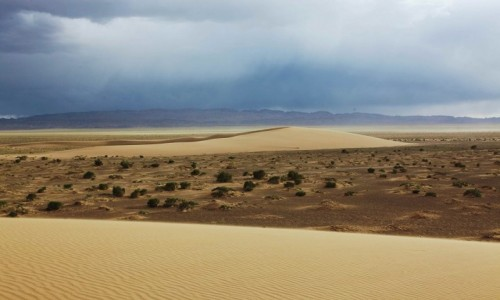 Zdjęcie MONGOLIA / Dalanzadgad / Pustynia Gobi / W stepie
