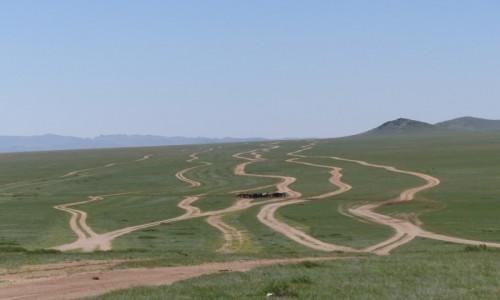 Zdjecie MONGOLIA / centralna / step / stepem szerokim