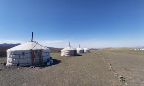 Zdjecie MONGOLIA / Gobi  / Gobi pustynia / Gobi