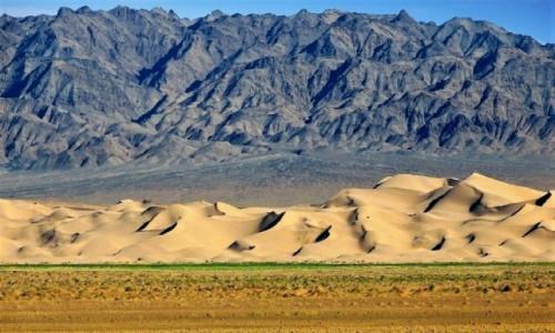 Zdjecie MONGOLIA / Pustynia Gobi / Park Narodowy Gobi Gurvansaikhan / Chongoryn Els