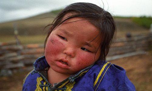 Zdjecie MONGOLIA / brak / północna Mongolia / Mongolia