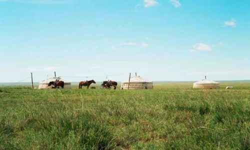 MONGOLIA / brak / Step / Typowa wieś mongolska...