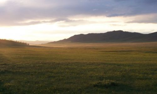 Zdjecie MONGOLIA / - / Mongolia / Step