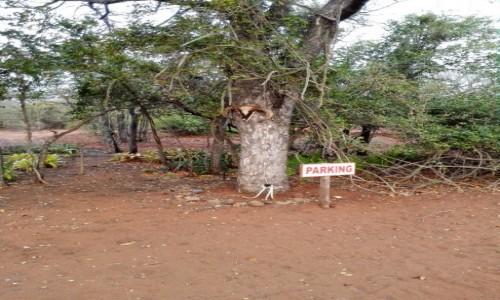 MOZAMBIK / Południowy Mozambik / Gdzieś przy granicy z RPA  / Parking