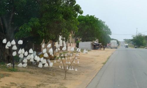 MOZAMBIK / Poł. - wschodni Mozambik  / Gdzieś po drodze  /