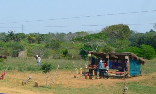MOZAMBIK / Poł. - wschodni Mozambik  / Gdzieś po drodze  / Sprzedawca pamiątek