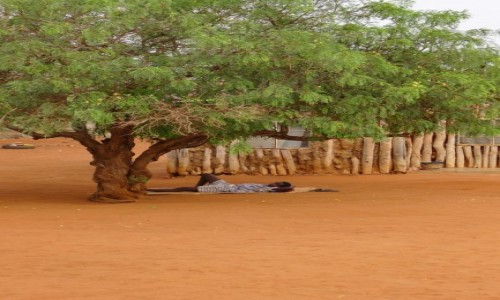 Zdjecie MOZAMBIK / Poł. - wschodni Mozambik  / Gdzieś po drodze  / African life